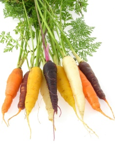 différentes carottes