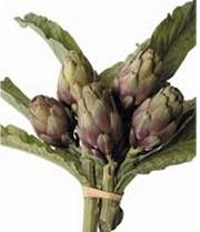 artichaut-violet