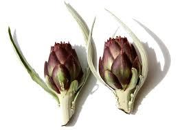 Artichauts violets