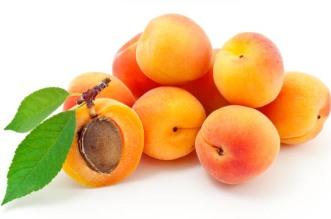 """Résultat de recherche d'images pour """"abricots"""""""