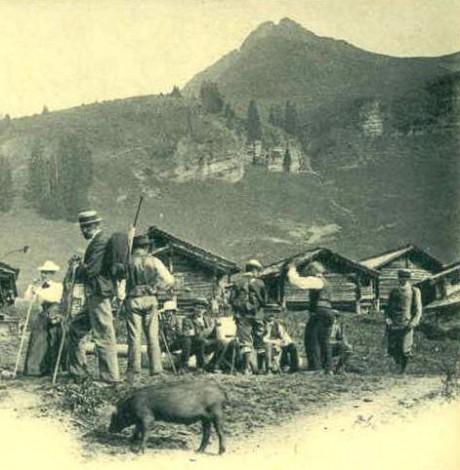 Dictionnaire géographique du canton de Vaud, Attinger, 1928, article Taveyannaz