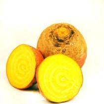 betterave jaune