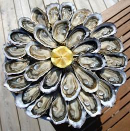 Plat d'huîtres2